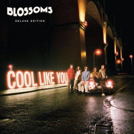 Обложка Blossoms - Cool Like You (2CD) (Deluxe Edition) (2018) FLAC